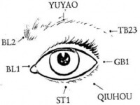 Acupressure Points to Improve Vision